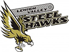 professional business services  logo for Steel Hawks